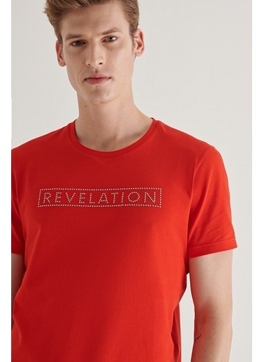 Avva Erkek  Bisiklet Yaka Tişört A11Y1061 Kırmızı